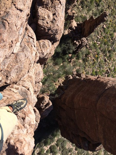 Rock Climbing Photo: Looking down from the top to the base of the Coop