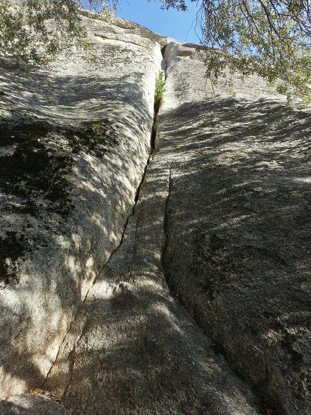 Rock Climbing Photo: Thor