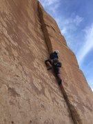Rock Climbing Photo: Jamming up hand bone