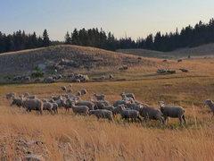 Rock Climbing Photo: trailhead amenities