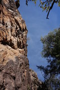 Rock Climbing Photo: Jeff heading for the small tree and finishing crac...