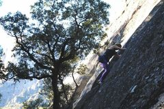 Rock Climbing Photo: Climbing in yosemite valley