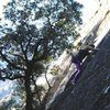Climbing in yosemite valley