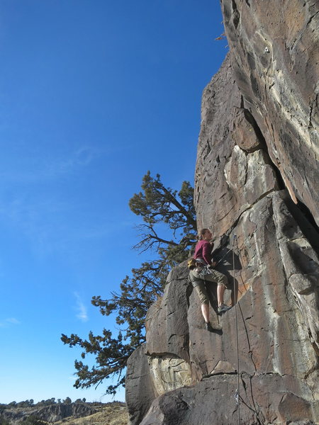 Rock Climbing Photo: Kira Engle, Sunny Side Up, 5.8 (Nov 2013.