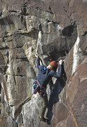 Rock Climbing Photo: Nick Vitale, on the thin crux of Coyote Bait, 11b ...