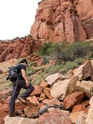 Rock Climbing Photo: The Approach to Genesis