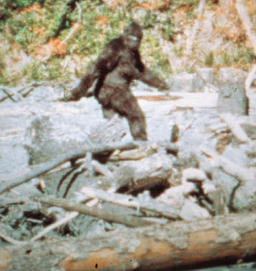 Rock Climbing Photo: Bigfoot visited the valley