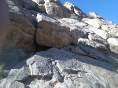 "Rock Climbing Photo: The ""yuccas"" at start of Pitch 3. It wor..."