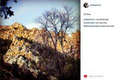 Rock Climbing Photo: Eldo looks like buds...? Kinda.