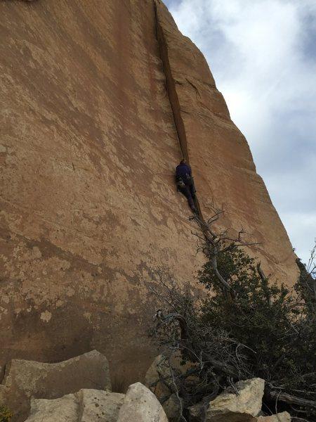 Rock Climbing Photo: Amy Pruss . Handbone
