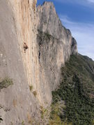 Rock Climbing Photo: Outrage Wall, Potrero Chico