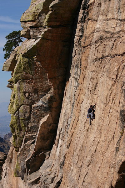 Rock Climbing Photo: Chris Walsh on Virgins Airline 5.10 at the Forgott...
