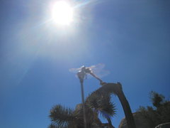 Rock Climbing Photo: dragons and sunbeams