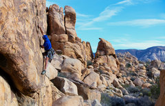 Rock Climbing Photo: Up the thin jagged splitter of Billy Barty Crack. ...