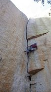 Rock Climbing Photo: sewing it up