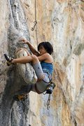 Rock Climbing Photo: Jungle Thai, 7B toprope
