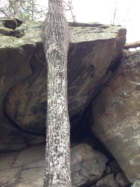 Rock Climbing Photo: Currahee Reality - The left crack seems a little m...