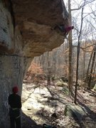 Rock Climbing Photo: Good shot of the draw line for Who Let the Snakes ...