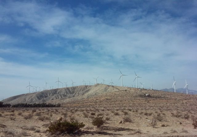 Roadside wind farm, Palm Springs Area
