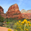 Angel's Landing - http://www.timetoclimb.com/hiking/hiking-angels-landing/