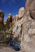 Rock Climbing Photo: Kai (6) starts route 1326