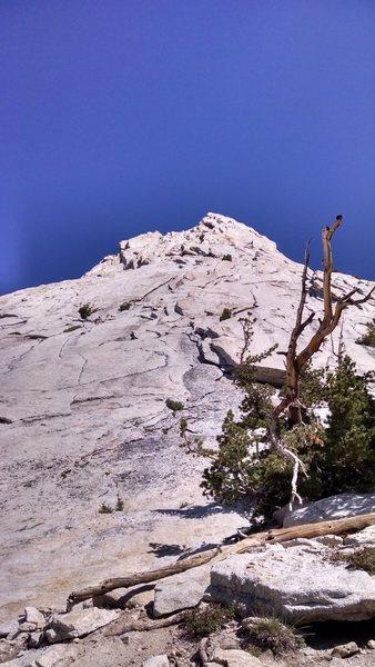 Rock Climbing Photo: SE Buttress
