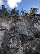 Rock Climbing Photo: Papi Chulo, 6c+. Bayahibe Dominican Republic