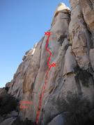 Rock Climbing Photo: Arms Control