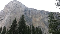 Rock Climbing Photo: The one and only El Cap. Summer 2015.