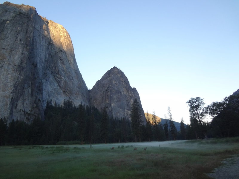 Early Morning in Yosemite. Summer 2015.