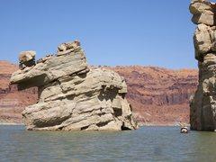 Rock Climbing Photo: Paddle