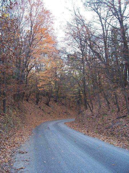Narrow road slow down