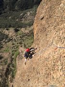 Rock Climbing Photo: Tim S arriving at the top of the first pitch.