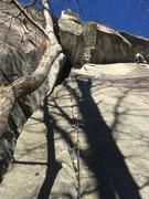 Rock Climbing Photo: Fruit Loops, Rumbling Bald