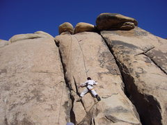 Rock Climbing Photo: Top roping at Trashcan Rock