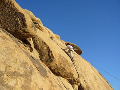 Rock Climbing Photo: Trashcan Rocks