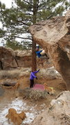 Rock Climbing Photo: Enjoying the steep moves on I Am a Pathetic Bastar...