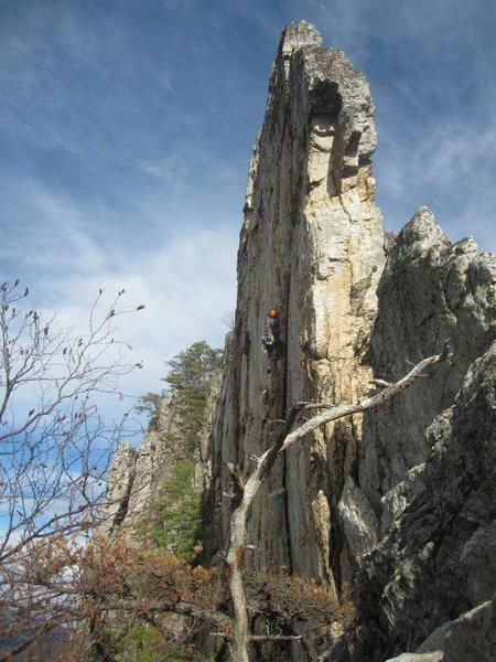 Rock Climbing Photo: Madmen Only, first 5.10 at Seneca rocks