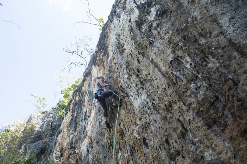 Katie on the new route