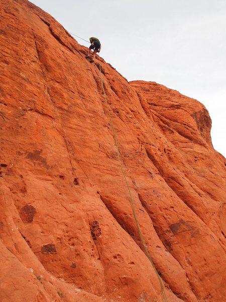 Rock Climbing Photo: rapping Flying Chuckwalla