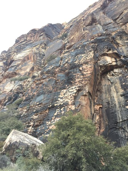 Started left of bird land on the shelf, climbed up and to the first belay, but with some rope management linked to the second belay with a 70m. Second pitch climbed 30' to a shelf and up the stellar crack splitting the face. In my opinion one of the best 5.8 pitches around. Rapped to the shelf with one 70m and down climbed 30' to the anchor. Two rappels down using the 70m.