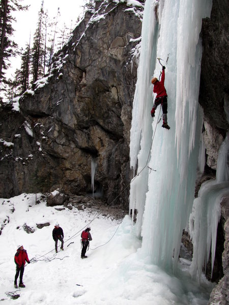 More pics from Bear Creek (Banff)