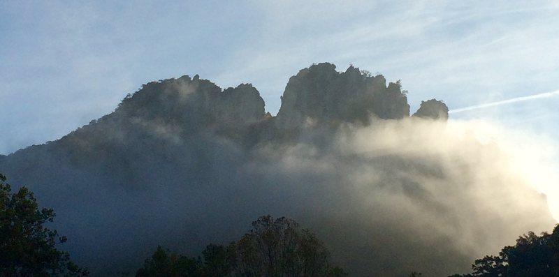 Seneca mist