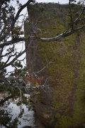 Rock Climbing Photo: Dean Martin boulder Left