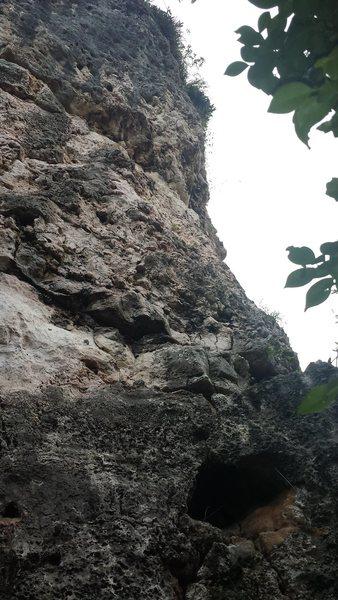 Rock Climbing Photo: Déjà Vu