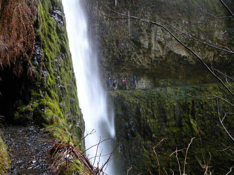Tunnel Falls on the Eagle Creek trail.