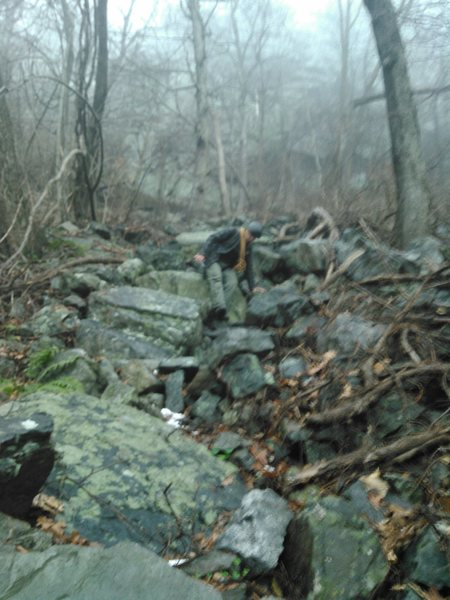 Rock Climbing Photo: this is the approach trail, with the practice wall...
