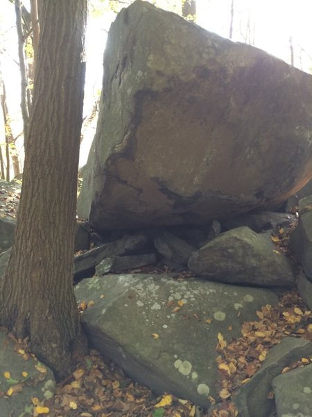 Rock Climbing Photo: Lolos