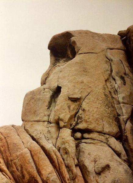 Rock Climbing Photo: jtree rock