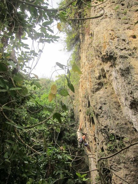 Rock Climbing Photo: Assis Hou